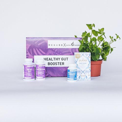 Healthy Gut Booster Premium