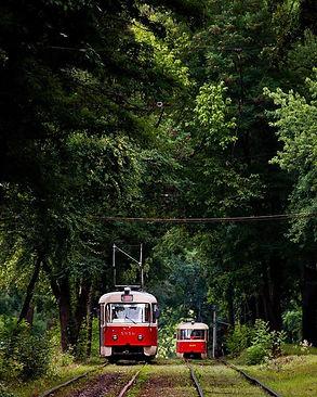 Трамвай у Пуща-Водицю.jpg