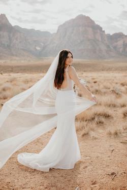 Las Vegas Bride