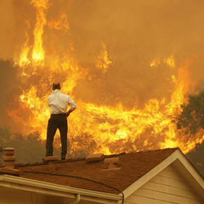 Why are some homes spared while others are totally destroyed in a Wildfire?
