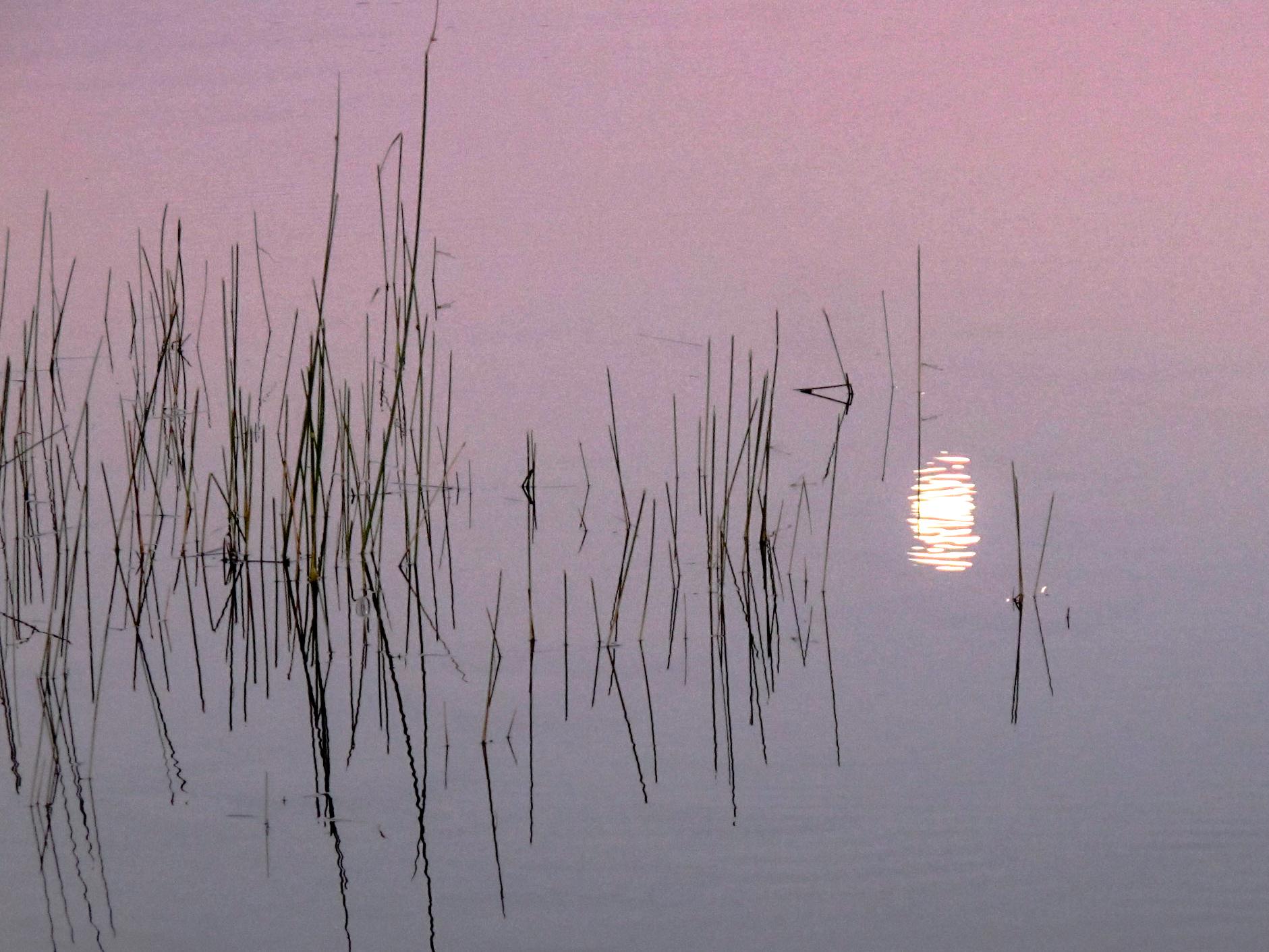 2011.07.Canada.landscape2724