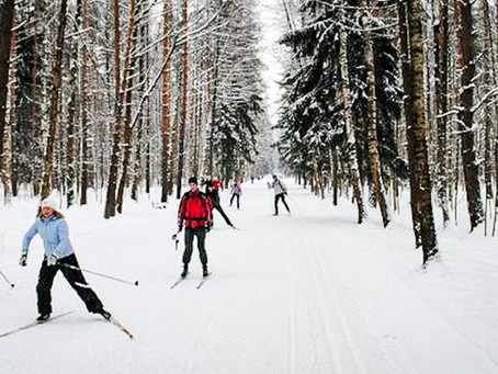 Six cross-country skiing sites with ski rentals