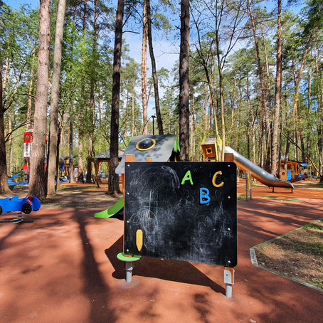 Razdolye - a new playground in a pine forest
