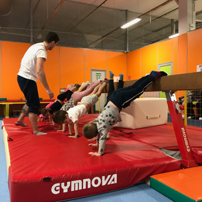 European gymnastic classes - all ages