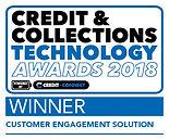 Cust Engage C&CT 2018 Winner Logos9.jpg