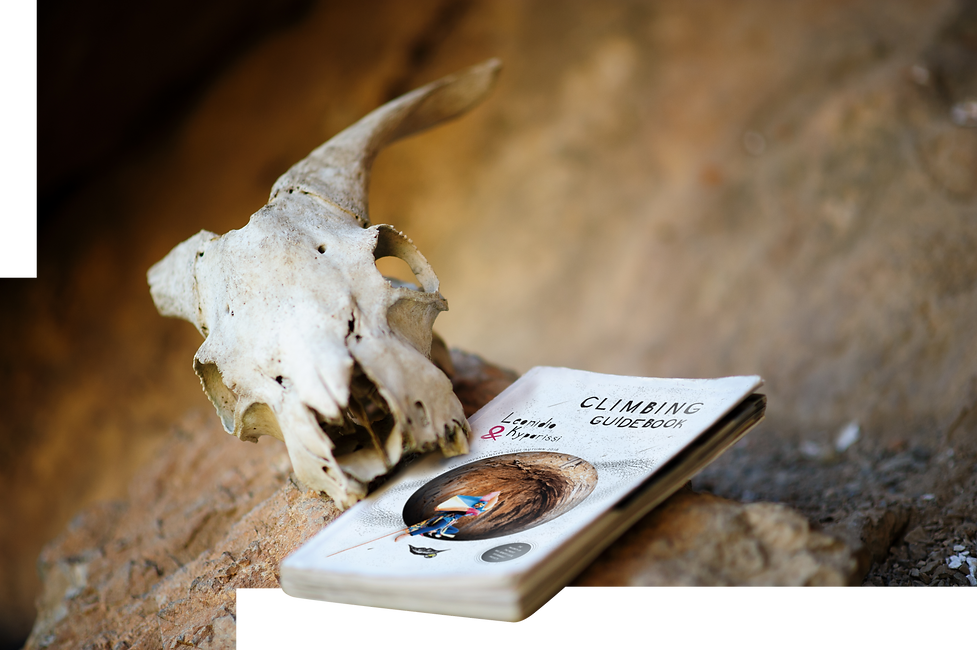 Front photo with guidebook.png