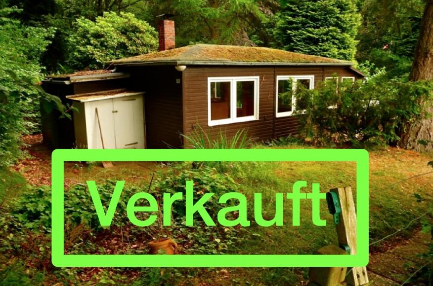 1003 Waldhaus mit Weitblick