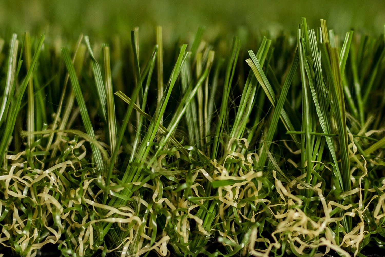 Optimum grass Side close up