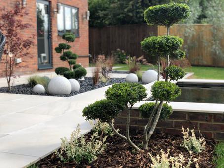 Contemporary Garden Re-Design