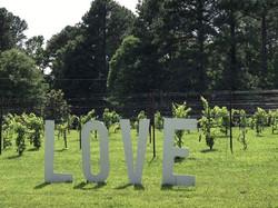 LOVE LETERS