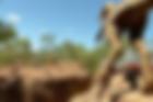 dinosaur canyon.png