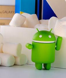 murshmallow, bomboniere gastronomiche, m