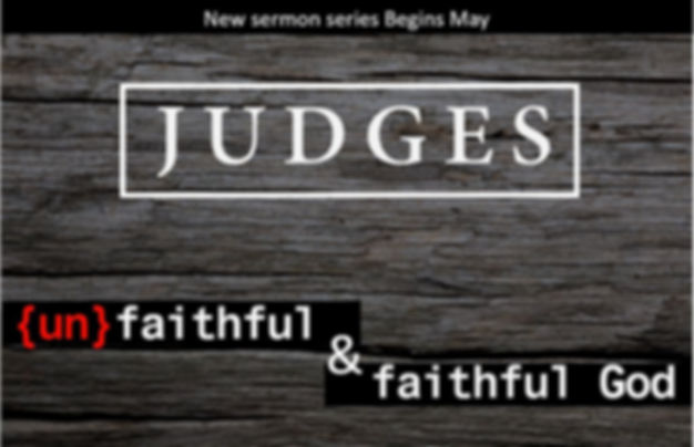 5 The Judges.JPG