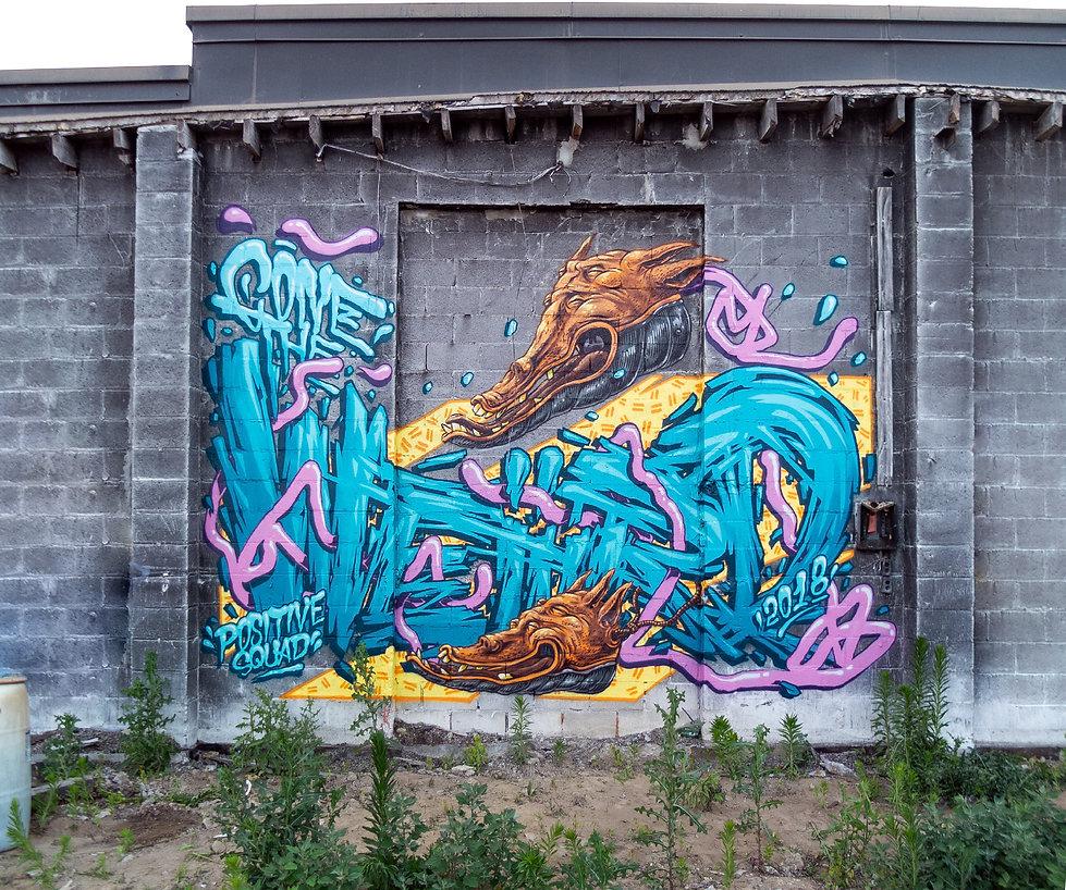 ConeTheWeird-TheWeird#4-Toronto2018_w.jp
