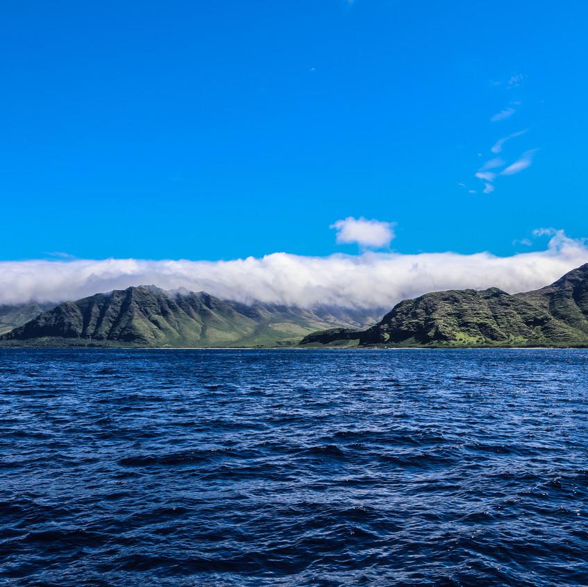 Shaw Jenny Hawaii-160
