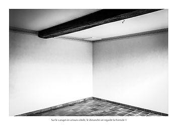Maricot-Biennale1.jpg