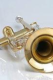 trumpetbell.jpg