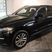 Jaguar vorne links.jpg