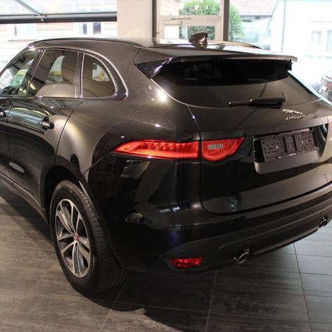 Jaguar hinten links.jpg