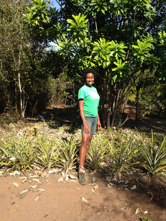 WWOOF BRAZIL: Recanto Natureza Divina