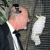 Art & the cockatoo RESIZE.jpg