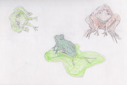 froggies by Jeannie Willets