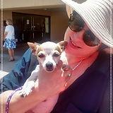 Tara w Chihuahua_edited.jpg