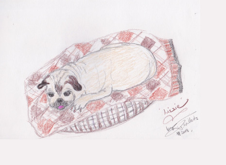 Lizzie Pug by Jeannie Willets