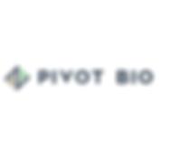 pivot square.png