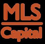 MLS_Logo_FA.png
