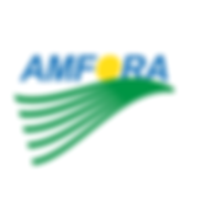 Final Amfora Logo ColorFINAL.PNG