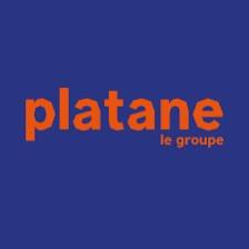 Platane le groupe