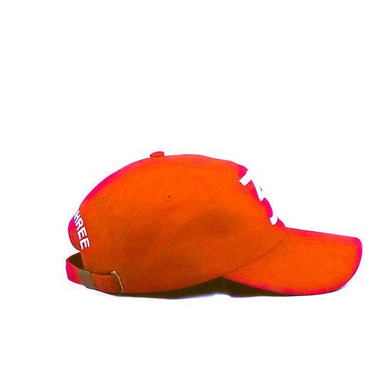3D | Hat