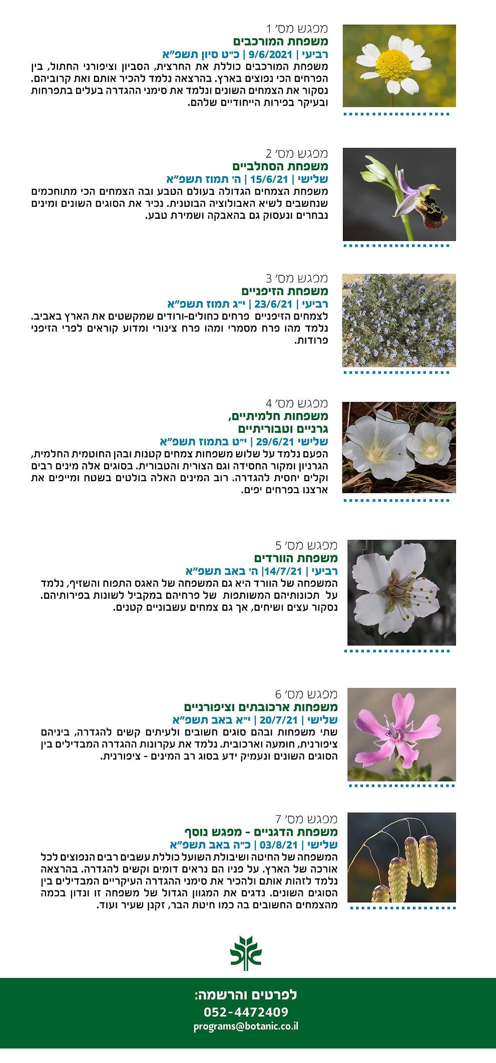 סדרת מפגשים צמחי בר2021 (1).jpg
