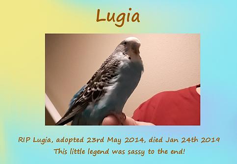 Lugia Memorial.png