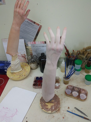 hand with fore arm beginning