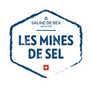 SB_Mines_Nouveau 2018_Logo_COULEUR_GRAND
