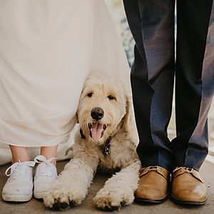 Kaitlin & David // Wedding Part 2