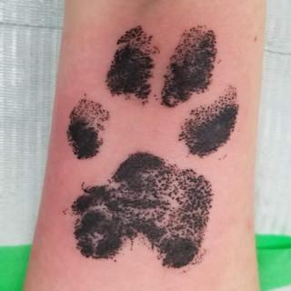Paw Pring Tattoo