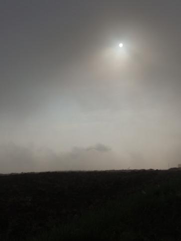 Rybna tonie we mgle...