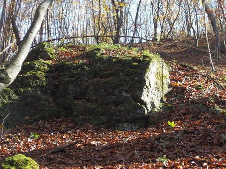 o kamieniach w Kamieniu