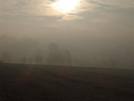 Rybna wyłania się z mgły