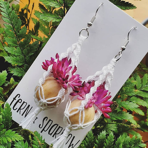 Purple Sedum Macrame Plant Hanger Earrings