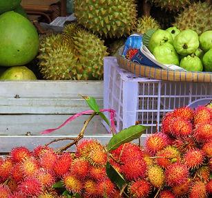 fruits tropicaux, Vietnam à la carte by asieland
