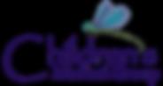 Childmedgrp Logo.png