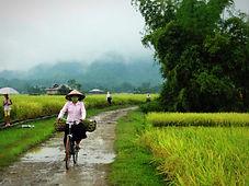 Cité perdue de Koh Ker, Vietnam a la carte by asieland