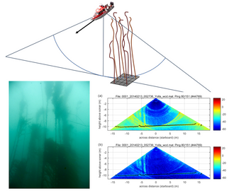 Congrats on the New Paper about Automated Filtering of Multibeam Water-Column Data