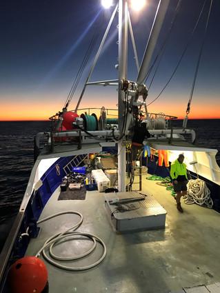 Deakin researchers help close gap in national ocean monitoring