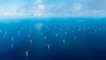 STAR OF THE SOUTH - Australia's First Offshore Wind Project