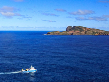 First Expedition to the Norfolk Island, as Part of the Parks Australia Funded Projects